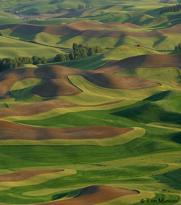 Palouse Region, Southeastern Washington
