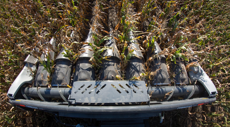 AGCO 3300 Command Series Corn Head