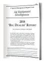 2018 Big Dealer Report
