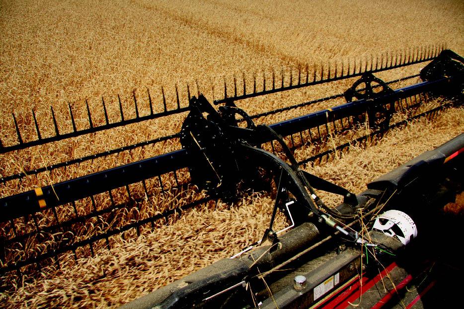 Ahead of the Curve: Draper Heads Refine Combine Capabilities | Farm