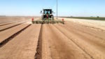 BW implement seed bed prep machines_1117 copy