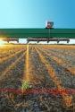 WEEDit selective spray technology_0118 copy