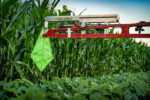 Hagberg Ag LLC Green Shield Pesticide Overspray Barrier_1119 copy