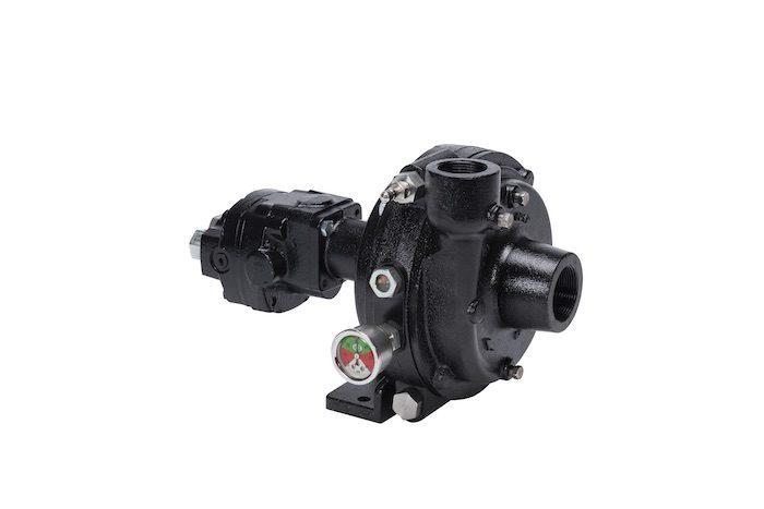 Ace Pro 5 Series FMCSC Pumps_0820 copy.jpg
