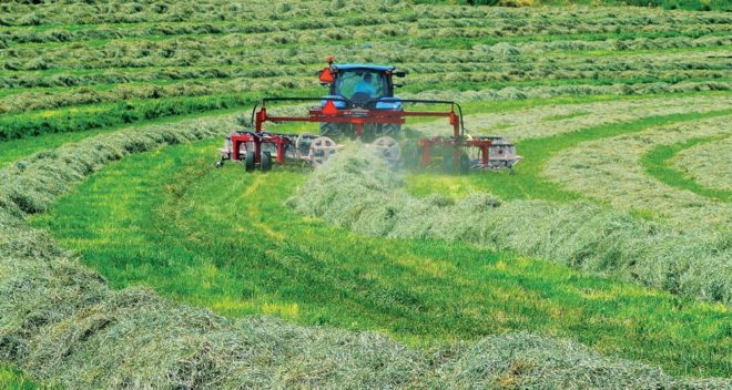 Challenges in Improving Forage Quality