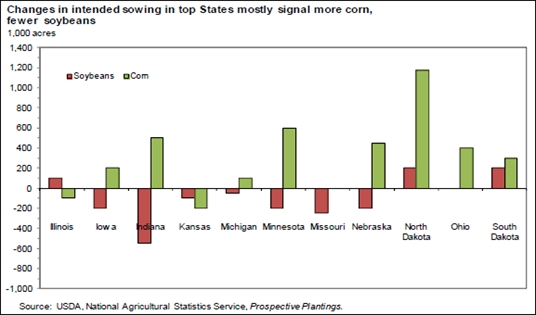 Changes in Intended Sowing in Top States Signal More Corn, Fewer Soybeans