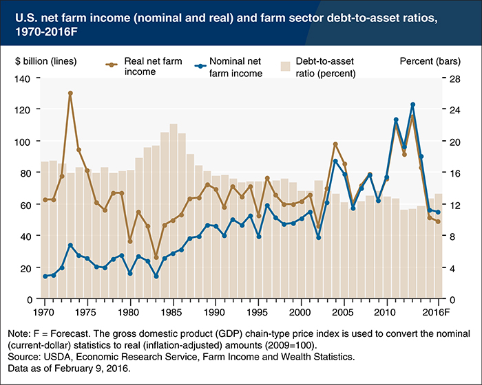 farm sector income